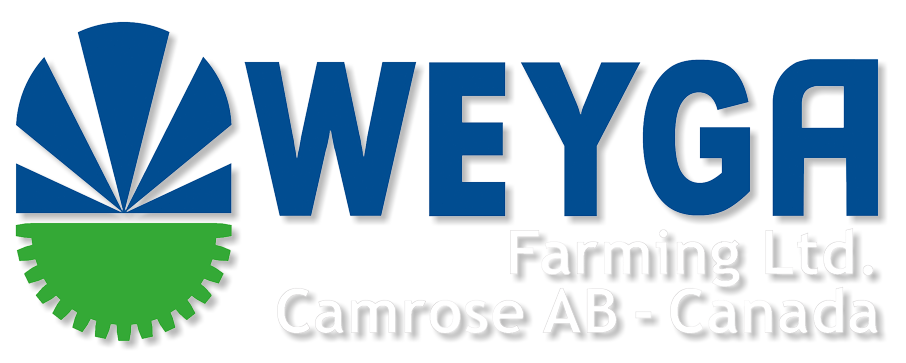Camrose Alberta Wheat Farm Weyga Farms Ltd